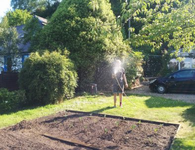 Watering the veggie plot