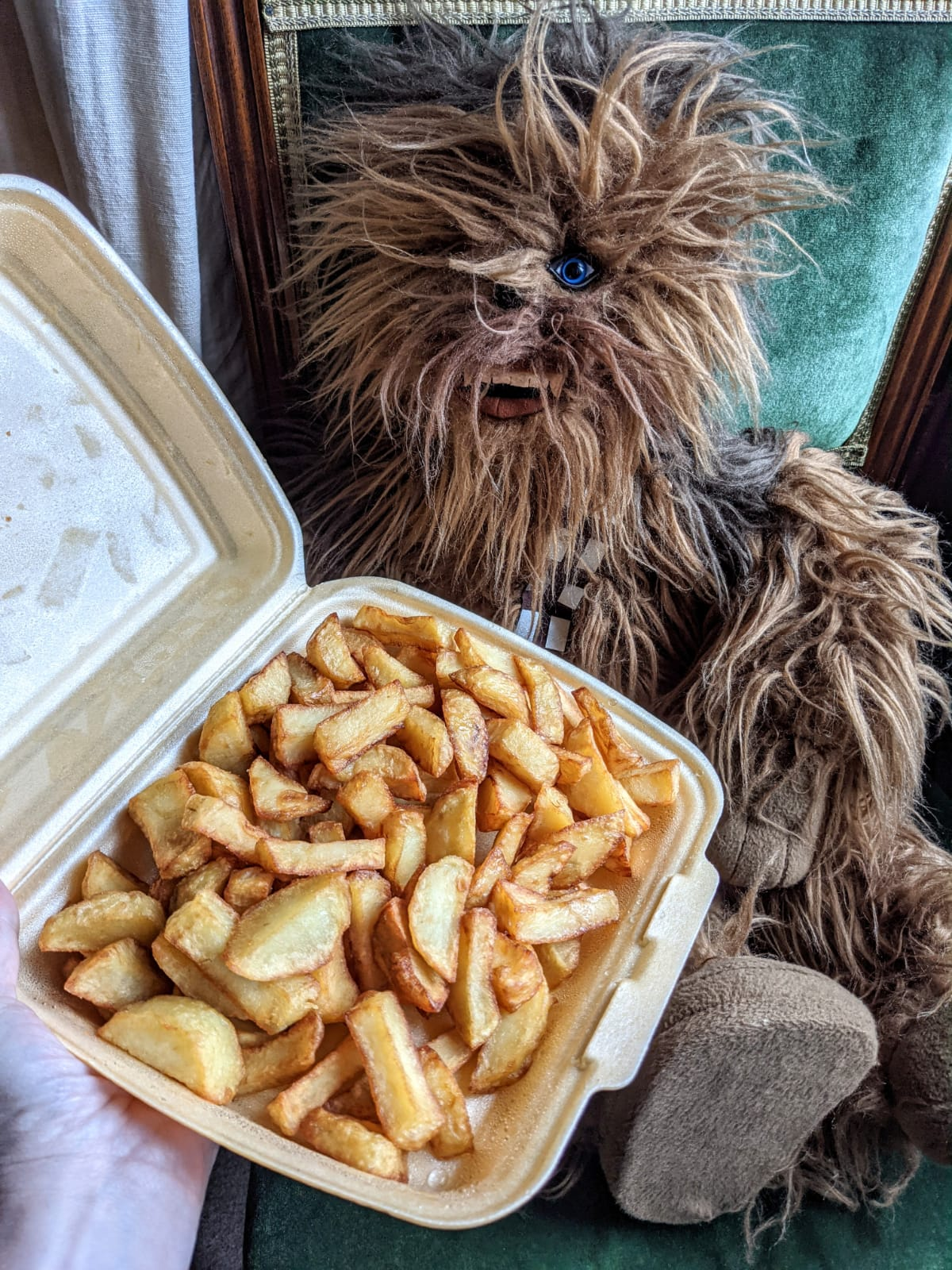 portion of chips